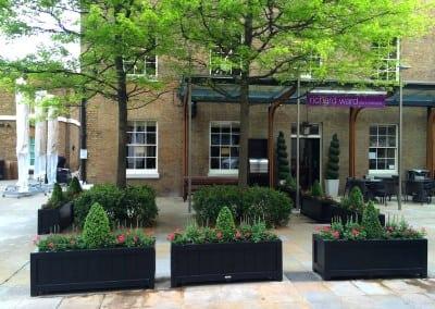 Polpo Restaurant Chelsea London